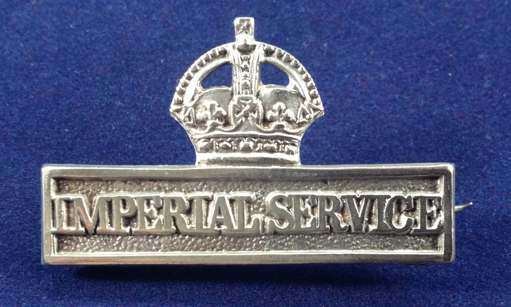 The badge as described in para 4 of the 'conditions of service' above