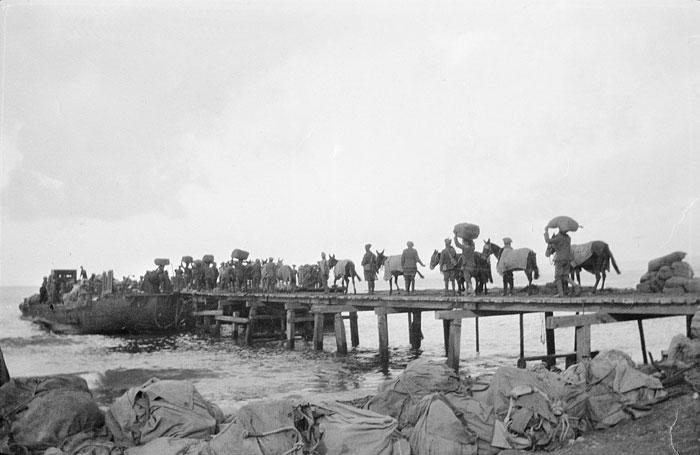 horses on walkers pier.jpg