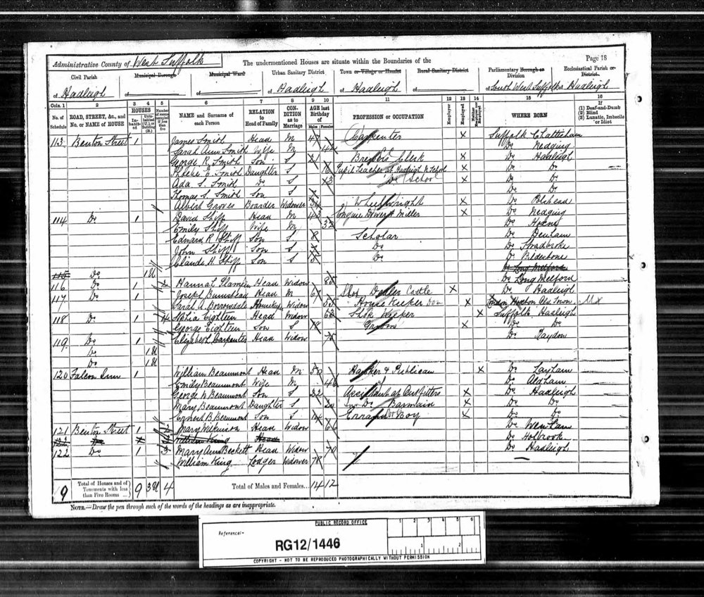 anc 1891 census.jpg