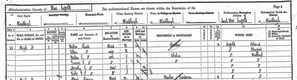anc 1891 census cropped.jpeg