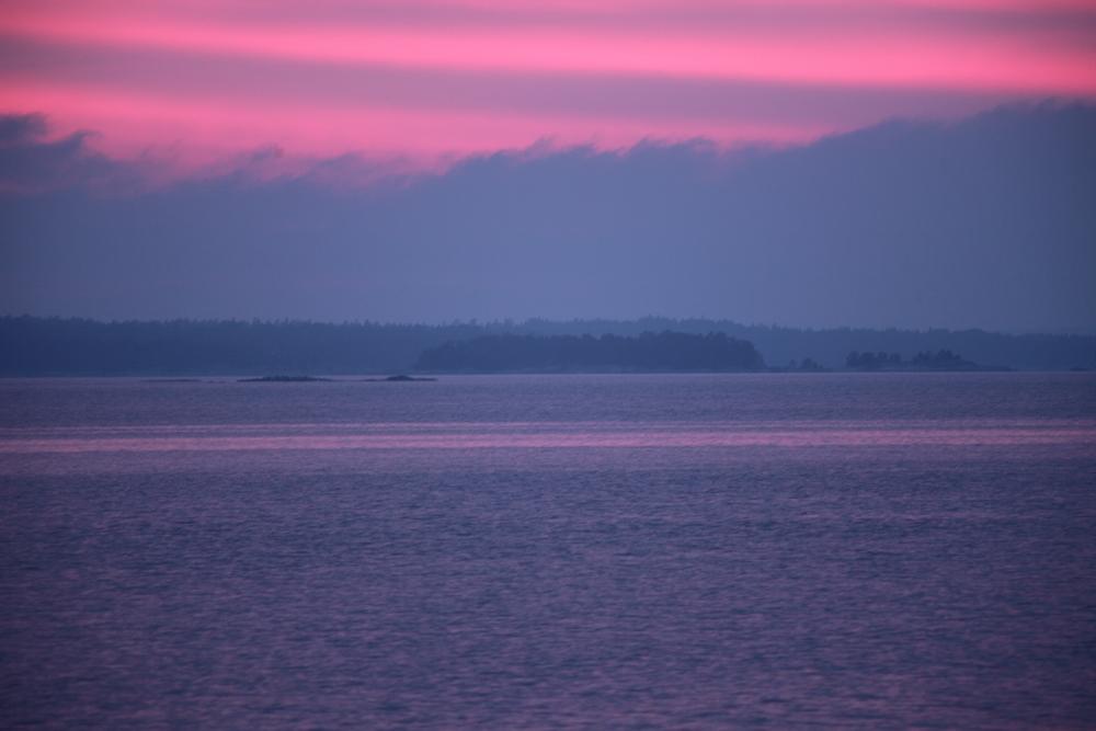 bolax_twilight.jpg