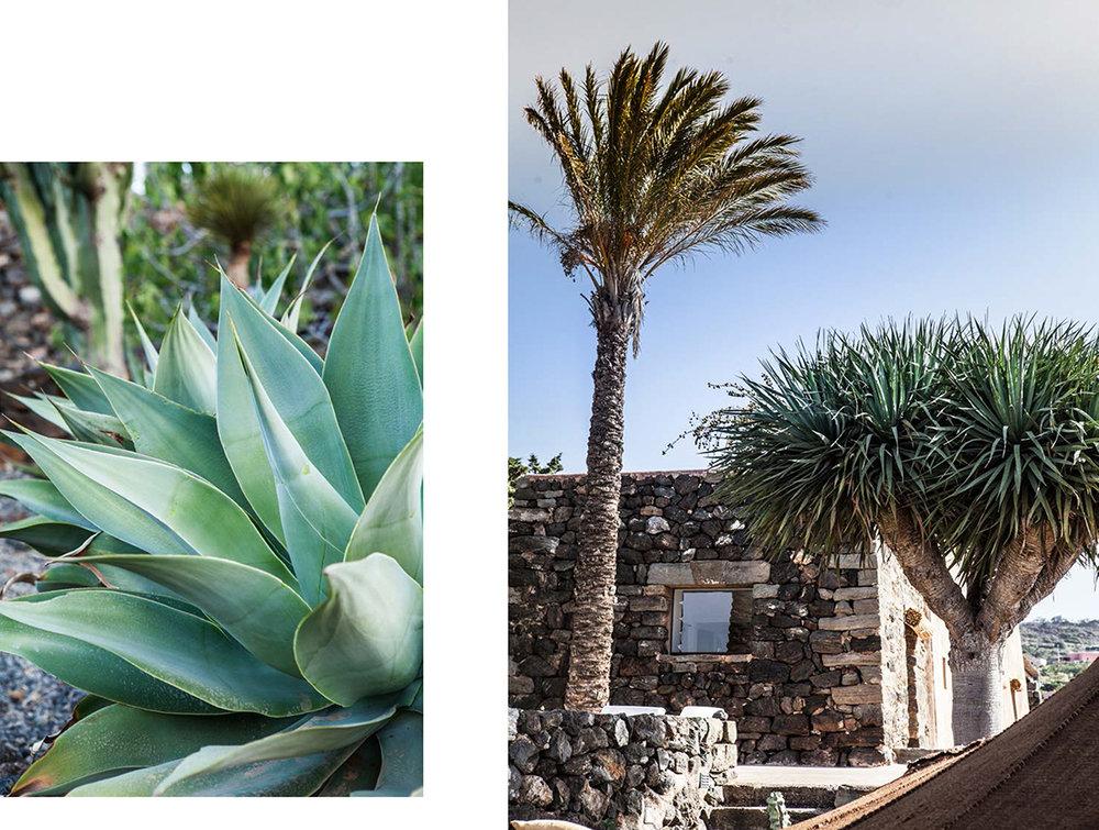pantelleria-8.jpg