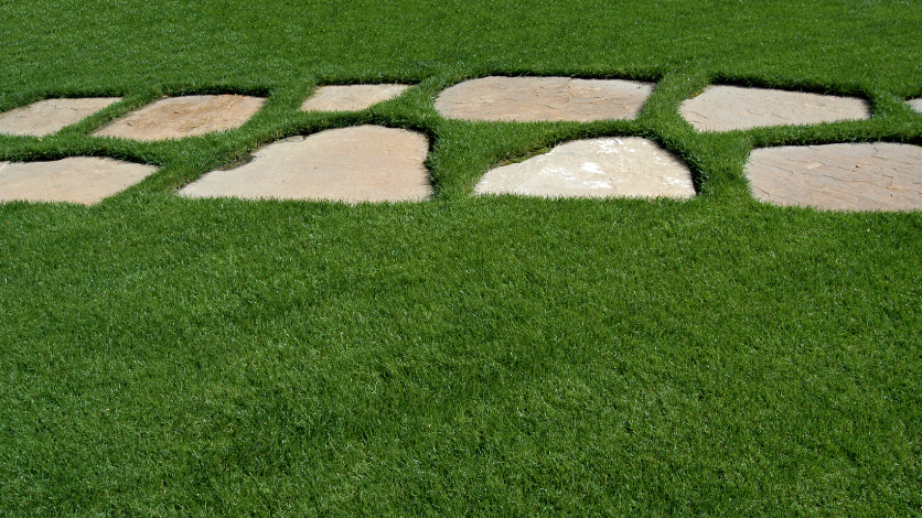using artificial turf in backyard or front yard in pine island, ny home