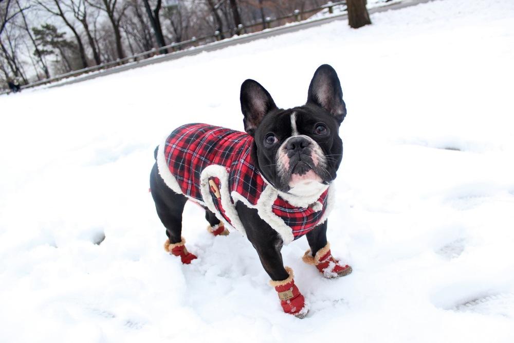 snow boots 3.jpeg