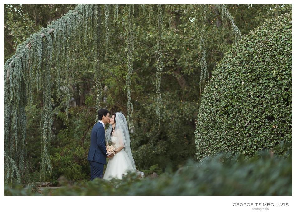 89_Wedding in Thessaloniki botanical garden.jpg