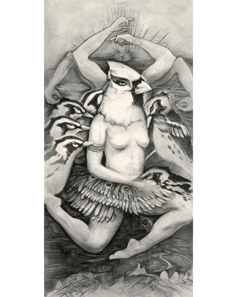 Cardinalis Humanis   (Hybrid Bird with Four Flying Arms and Five Birds over Egg City)     - 2012 - Charcoal and Conte on Arches Cover Paper, 48 x 108 inches