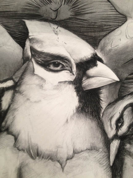 Cardinalis Humanis (Detail)   with Four Flying Arms and Five Birds over Egg City   - 2012 - Charcoal and Conte on Arches Cover Paper, 48 x 108 inches