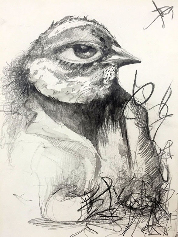 MarciaNeblett_5x8_BirdLargeEye.jpg