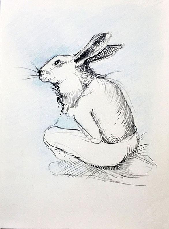 MarciaNeblett_5x8_BunnyThinking.jpg