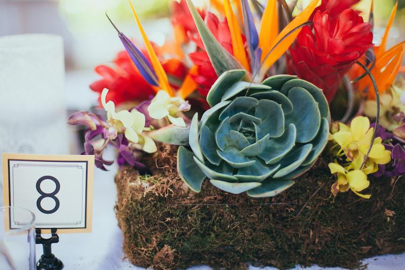 succulentcenterpiece.jpg