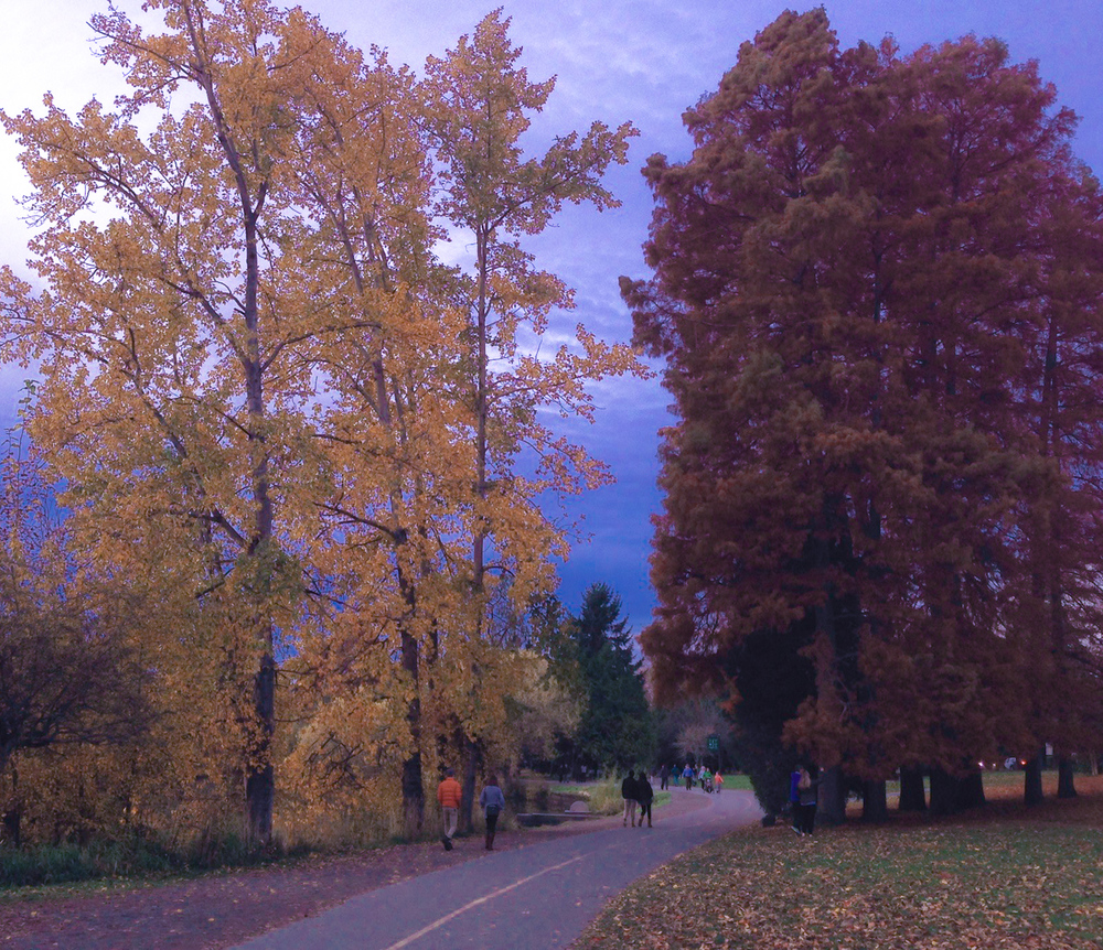greenlake fall.jpg