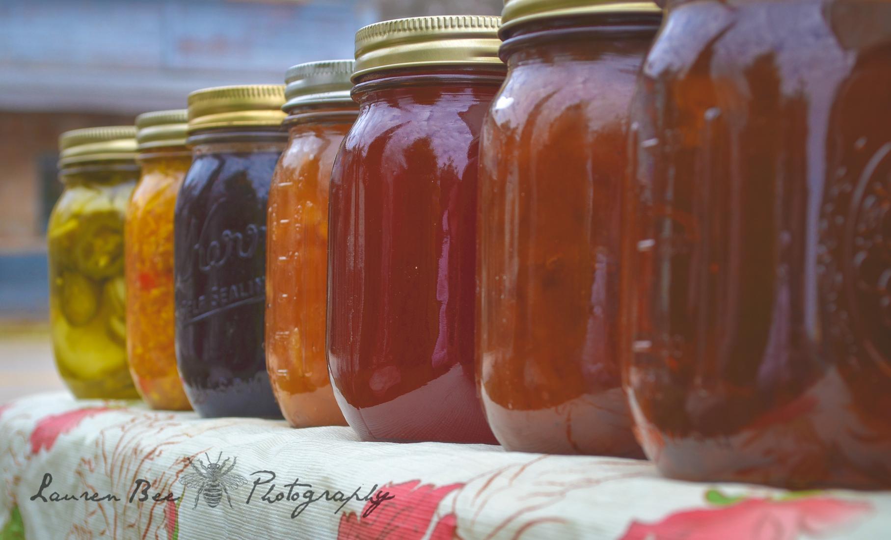 jars in sunlight