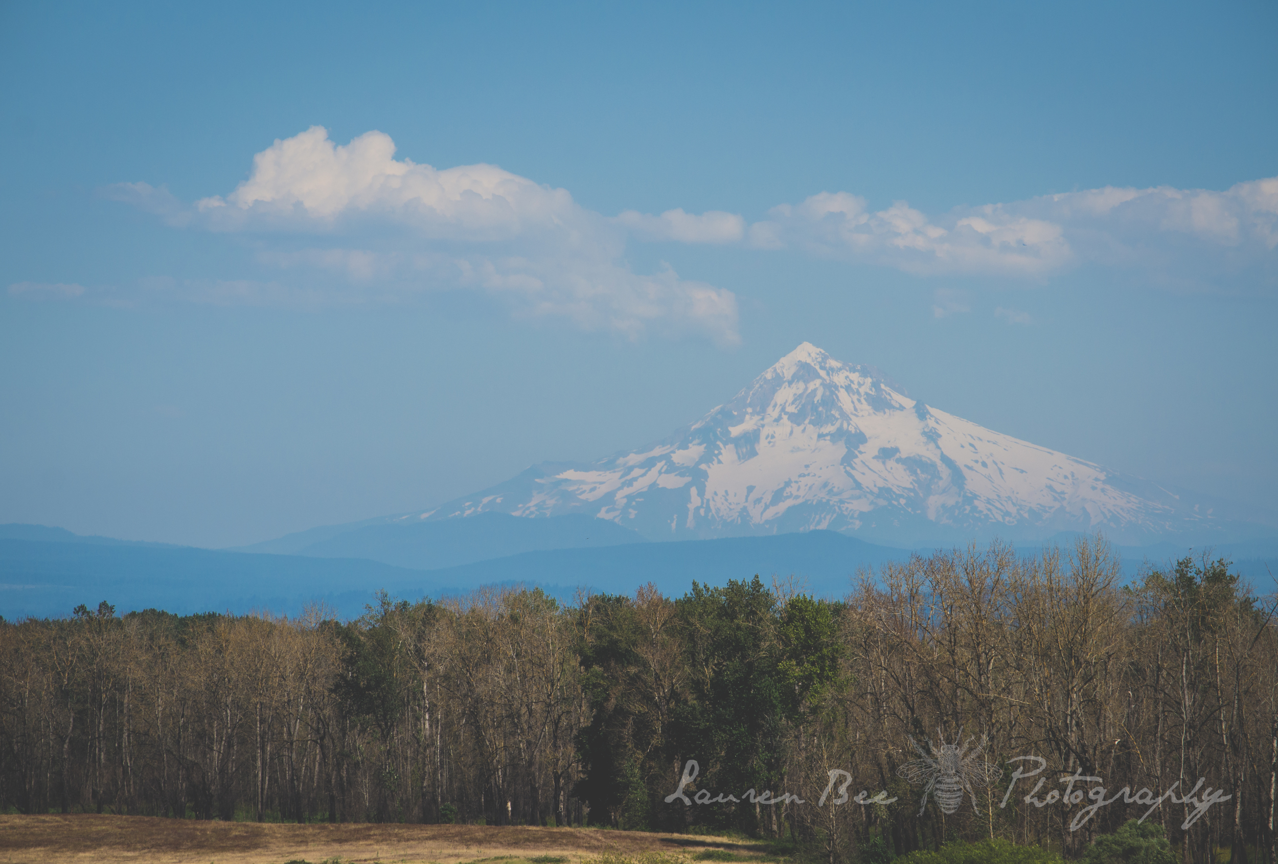 Mt. Hood, proud sentinel over the Columbia River, Portland Oregon, and Vancouver Washington