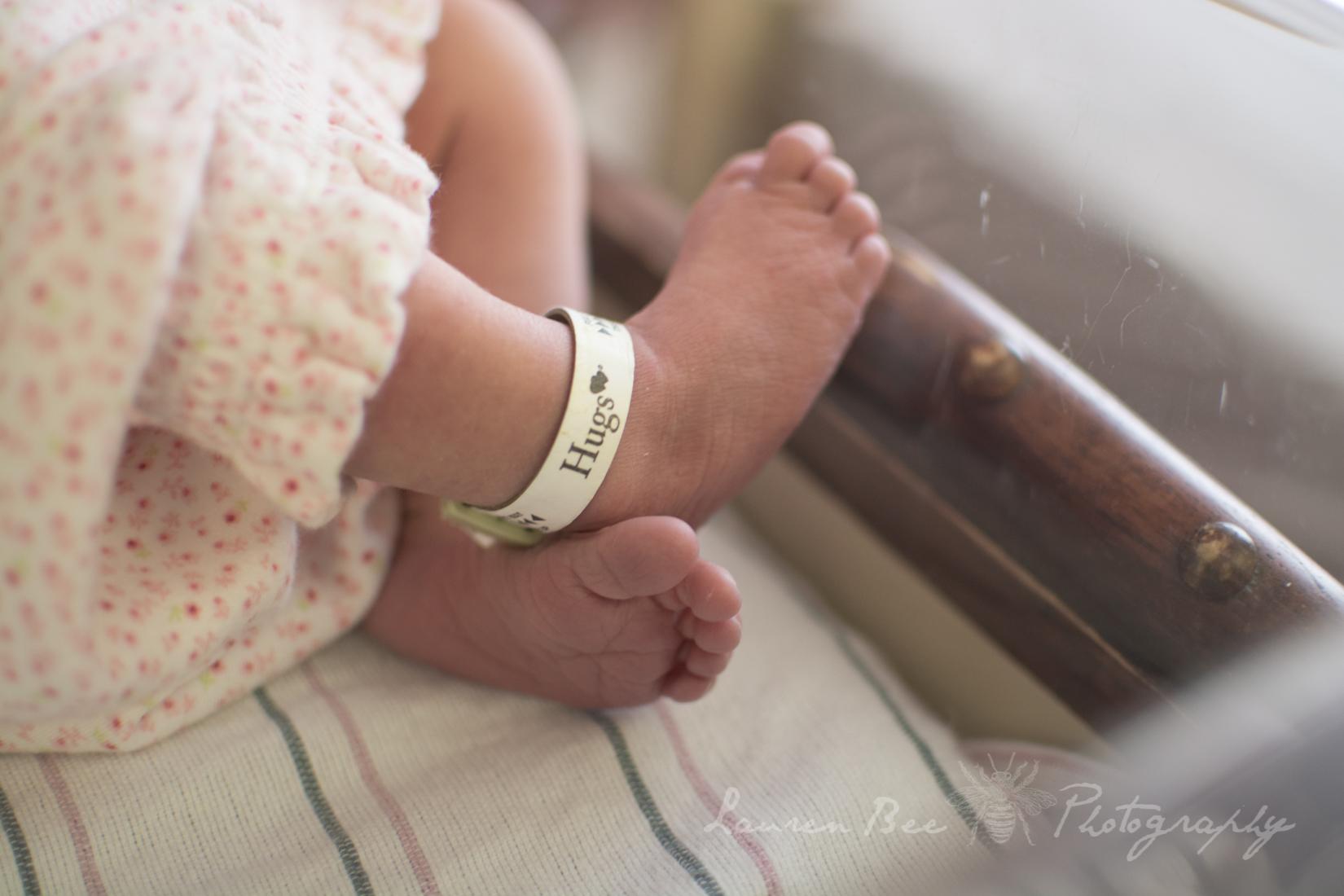 baby toes Huntsville AL photographer