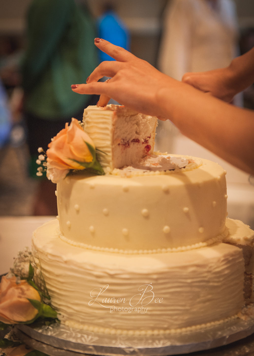 28b Huntsville Madison Wedding Photographer cake 2-22.jpg