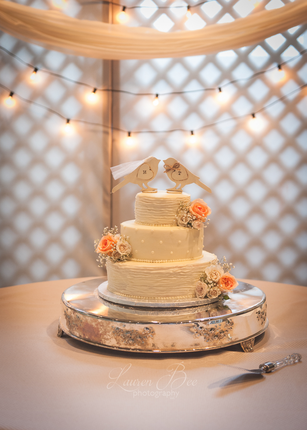 Huntsville Madison Wedding Cake Photographer.jpg