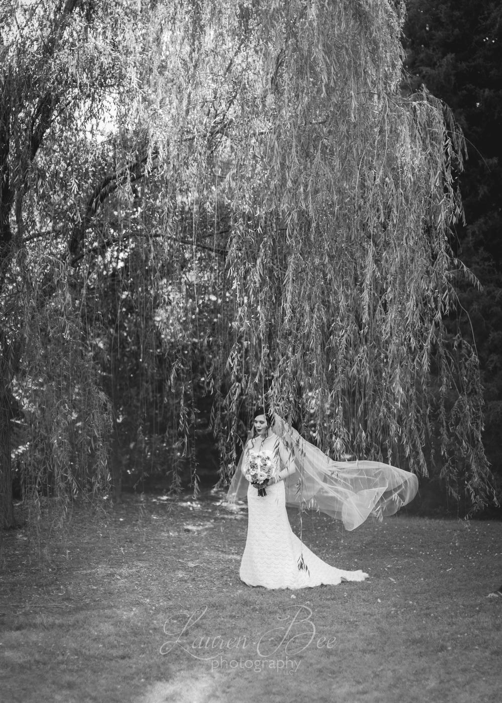 11d Huntsville Wedding Photographer-13.jpg