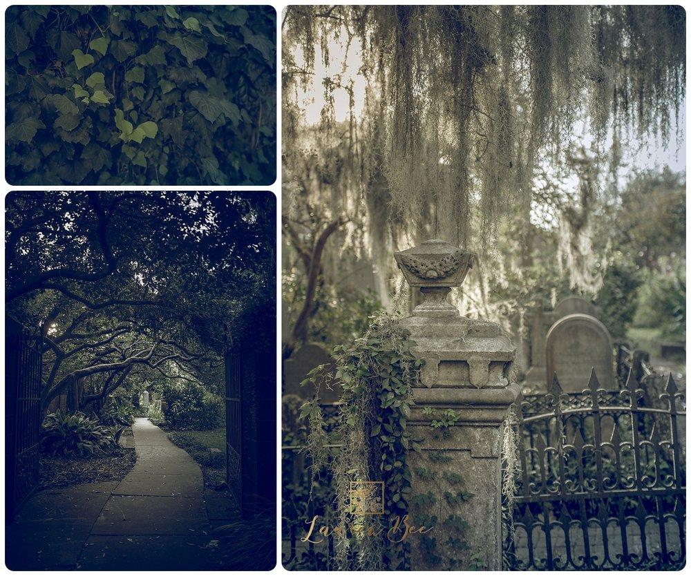 Charleston-4.jpg