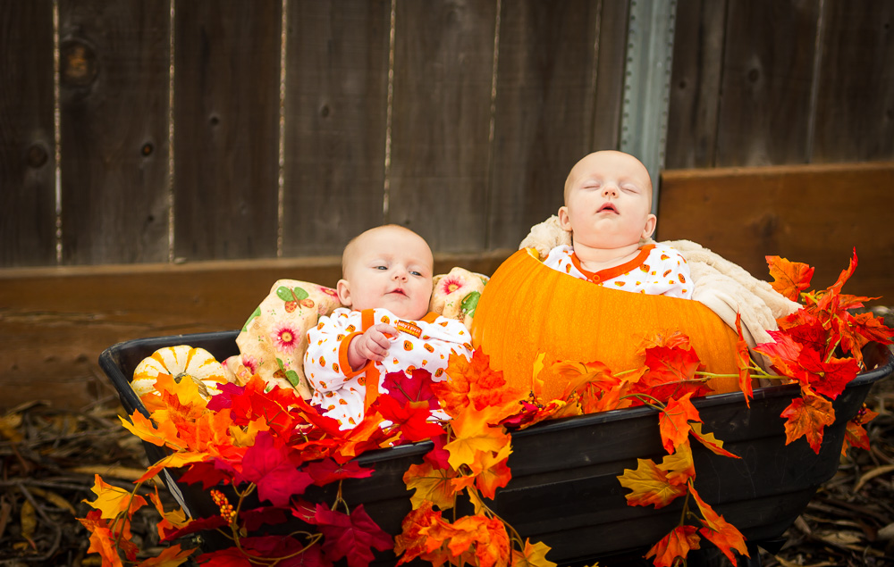 d-and-d-photography-babies-in-a-wagon