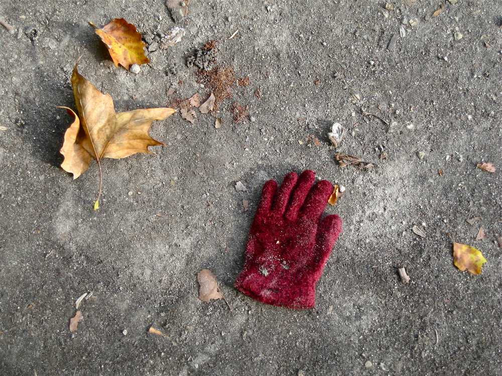 Leaves with red glove , Brussels, October 2013