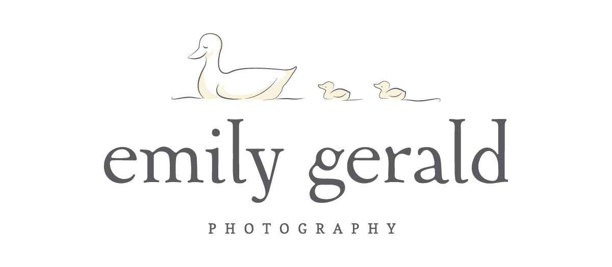 Northern Virginia Birth Photographer