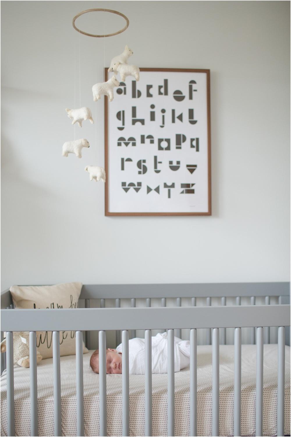 Northern Virginia Premier Birth and Newborn Photographer_0000.jpg