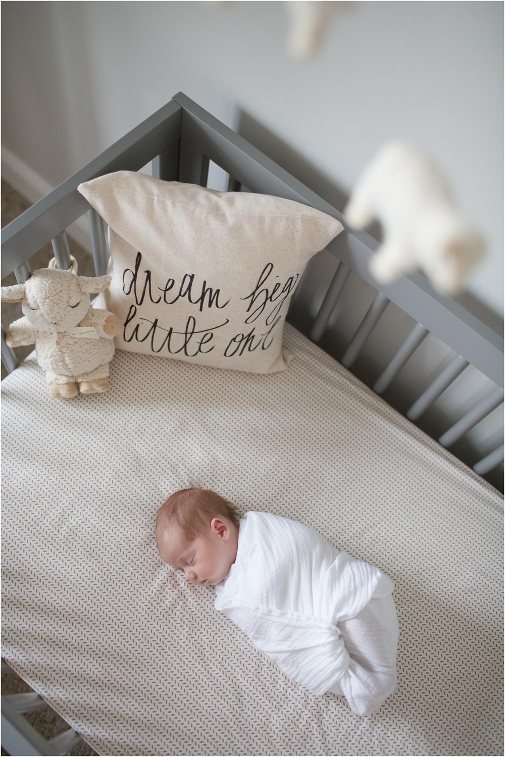 Northern Virginia Premier Birth and Newborn Photographer_0006.jpg