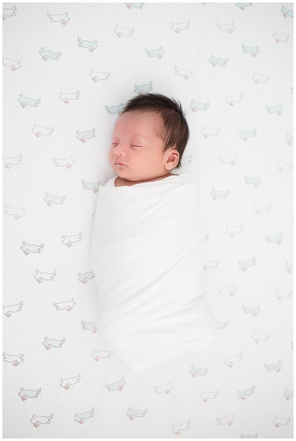 northern virginia newborn photographer4.jpg