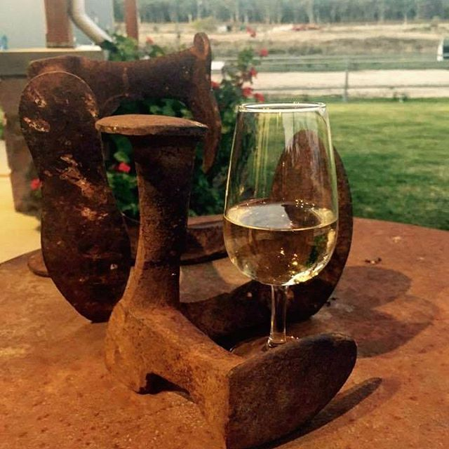 Finding a glass Flyfaire wine 🍷almost anywhere is always a good thing 😊 #glassofwine #wine 🍇 #flyfairewinery #flyfairewineswoomargama #flyfairewines #riesling #chardonnay #wineries #winery