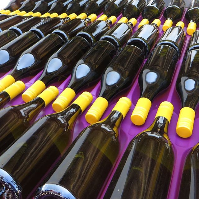 Flyfaire Chardonnay 2017 in bottles for all those Chardonnay lovers!🍇🍷after a year in the vats, it has matured nicely. Looking forward to sharing our newest vintage with you all! #chardonnay #wine #wineries #cellardoors #cellardoor #winebottles