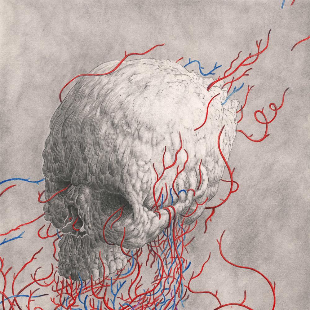 Skull-Variations-2.jpg