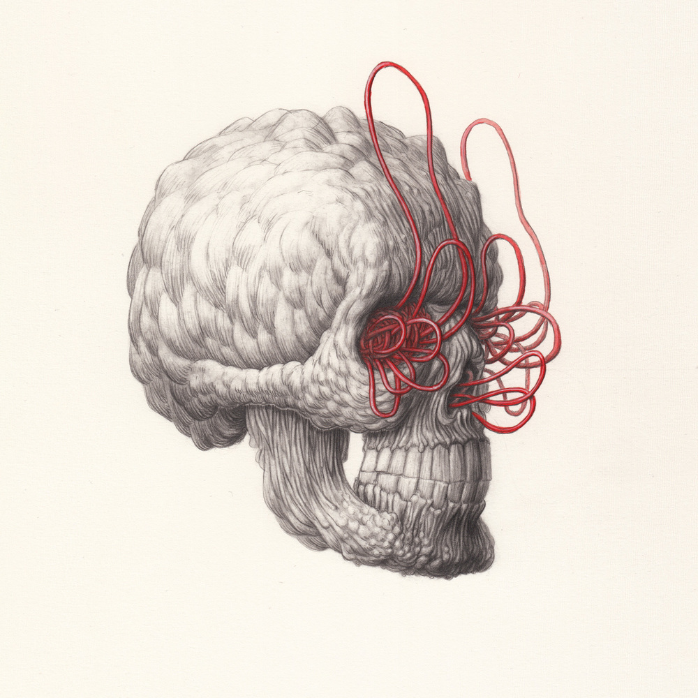 Skull-1-by-Nick-Sheehy.jpg