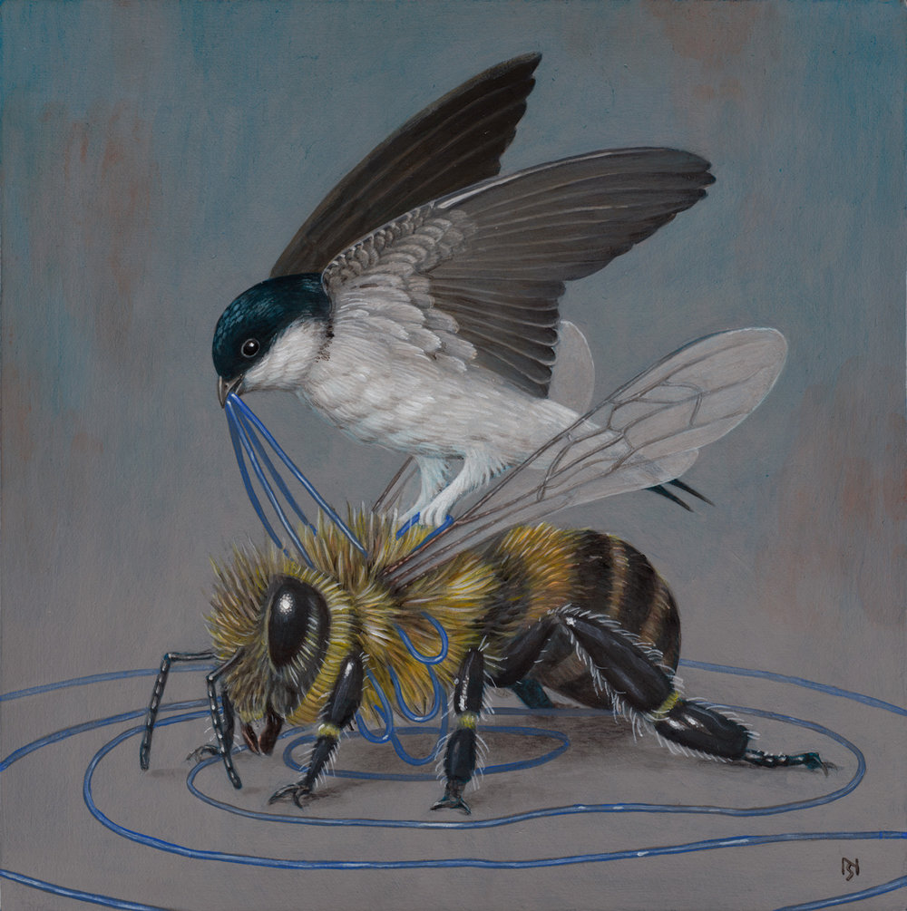 Bird-And-Bee-by-Nick-Sheehy.jpg