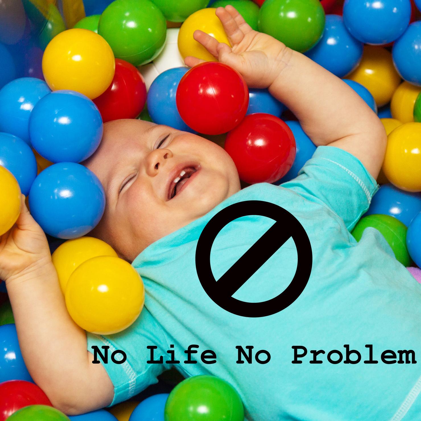 No Life No Problem