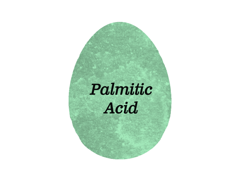 PalmiticAcid-SelvaBeat.png