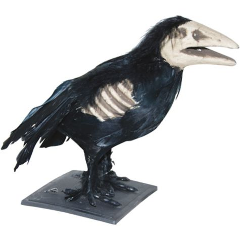 This 'Foam Skeleton Crow' wasn't exactly built to last.  Source .