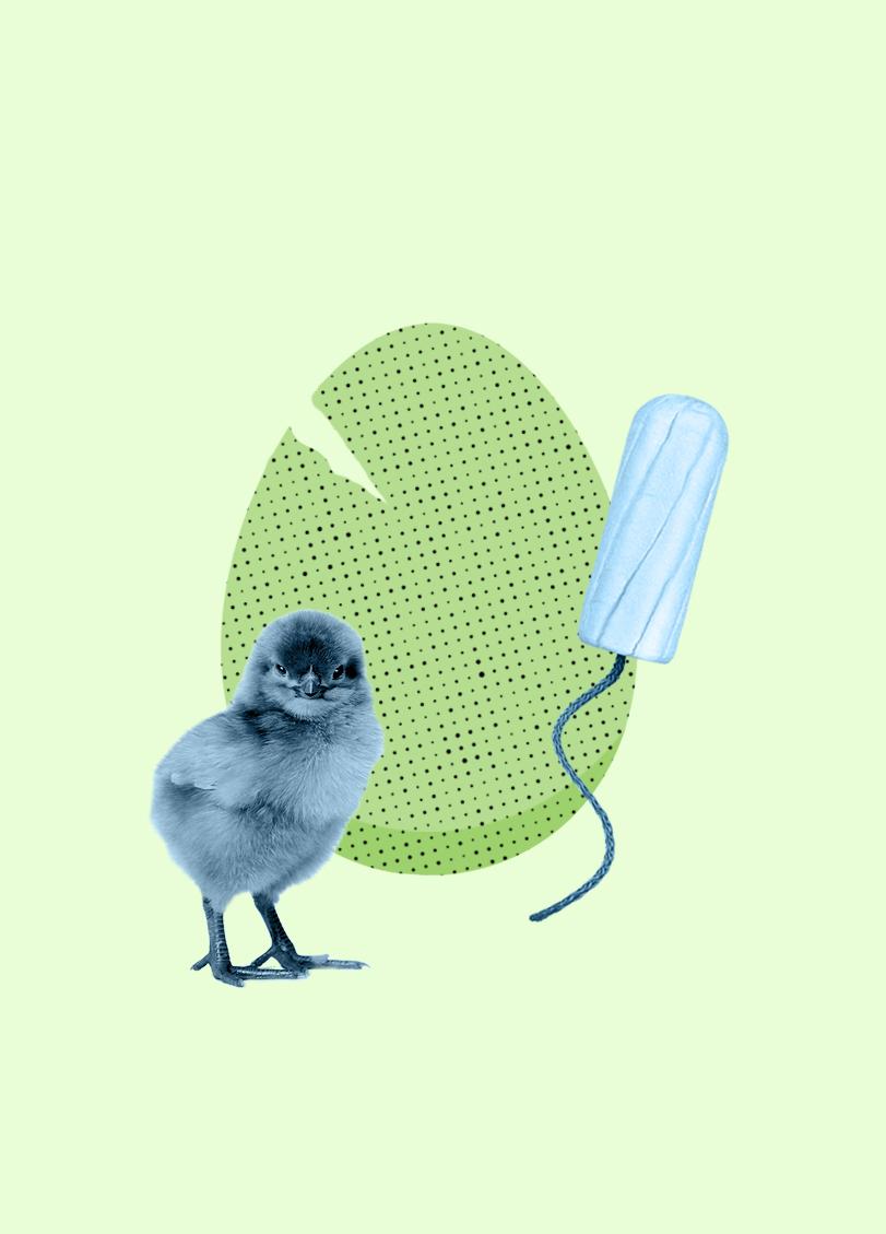 sb-bad-egg-inside2.jpg
