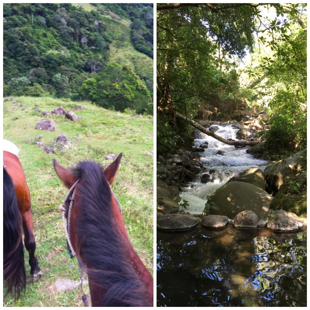 Private horseback ride to the hot springs. Incredible experience.
