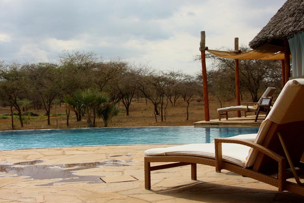 safari-honeymoon.jpg