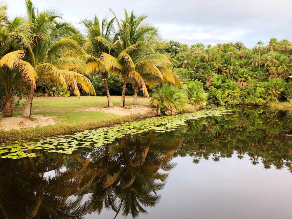 Best spa in Belize