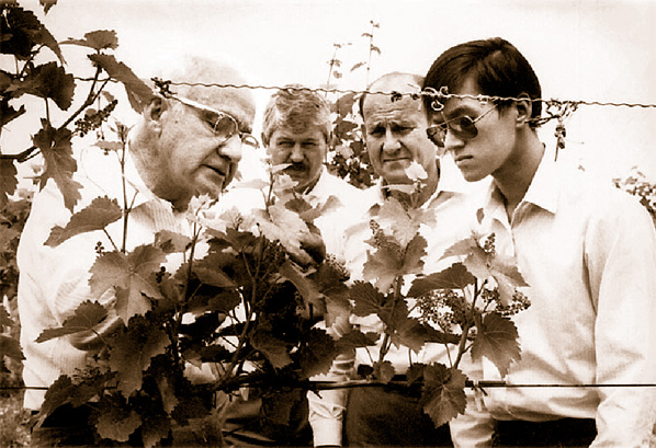 Glen (far right) with viticulture greats, Nelson Shaulis (far left) and Bob Anderson (pictured next to Nelson, Head of Dept at the Geneva Experiment Station at the time).