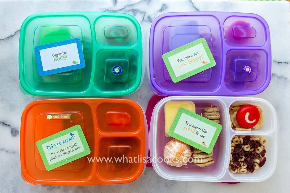 show them the lunchbox love | whatlisacooks.com