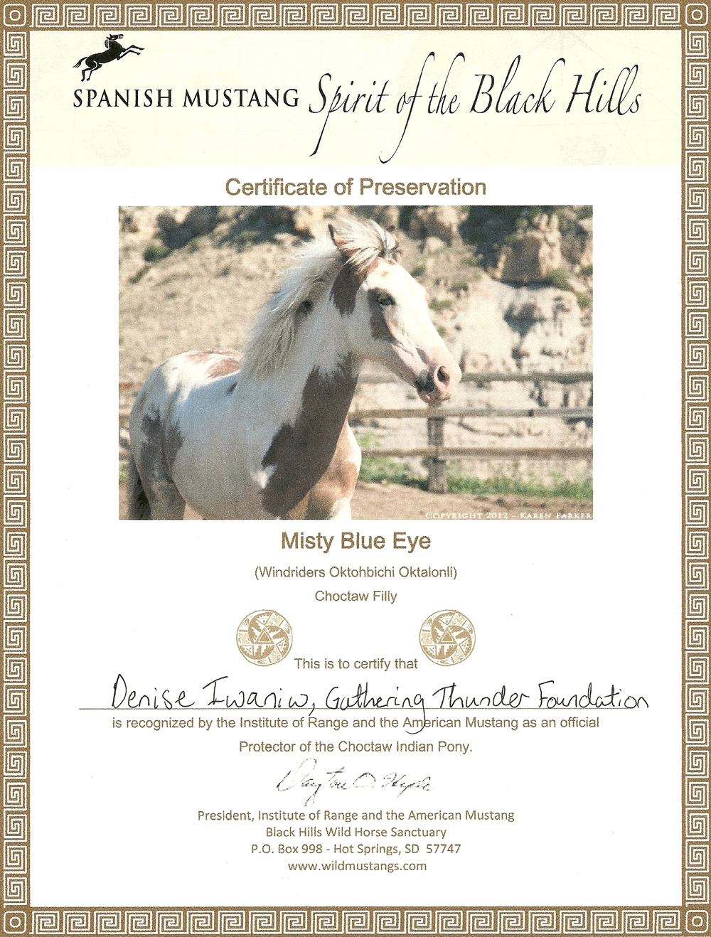 Horse Sanctuary 1.jpg