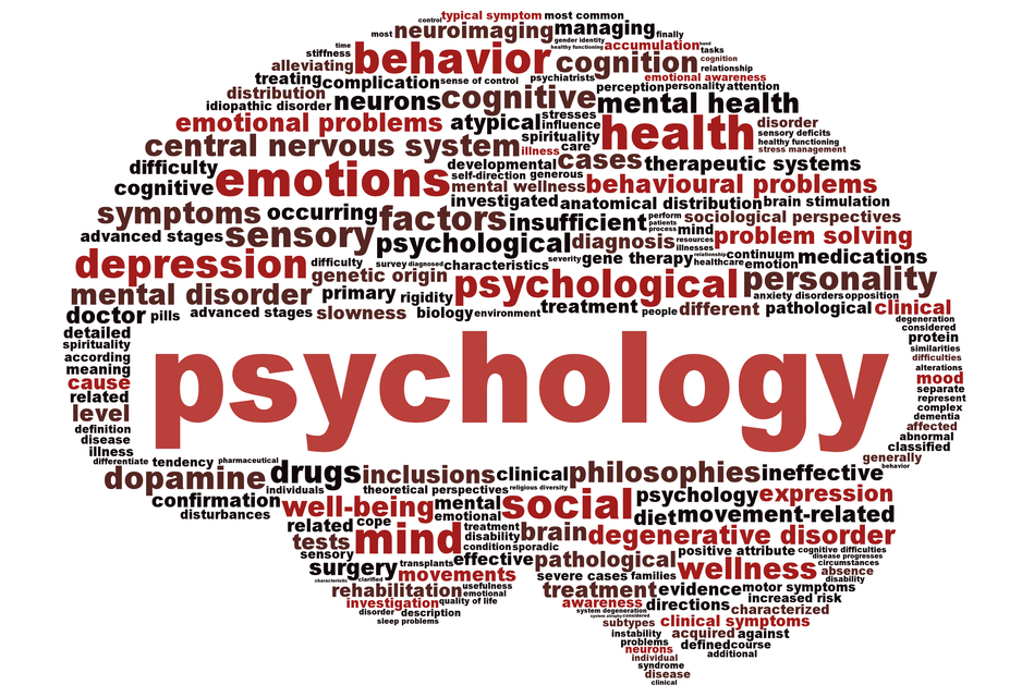 Clinical Psychology need expert help