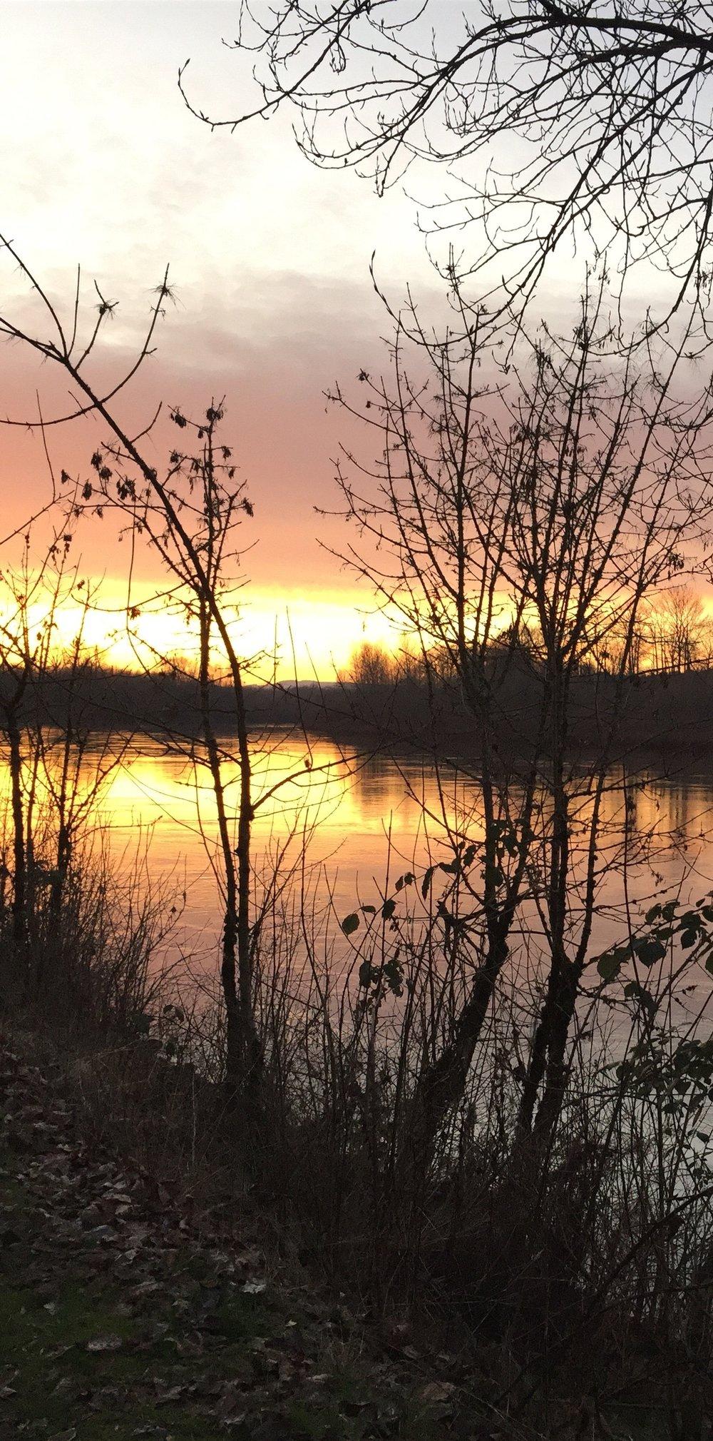 Willamette River 2/10/18/naomi khan