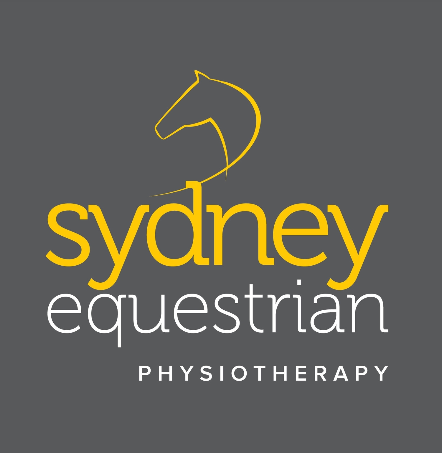 SE Physiotherapy
