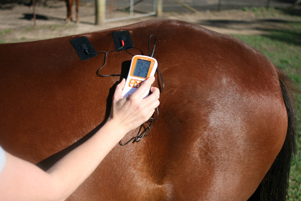 A TENS machine produces electrical stimulation to the skin and muscles in order to provide pain relief and/or stimulate muscle contraction.