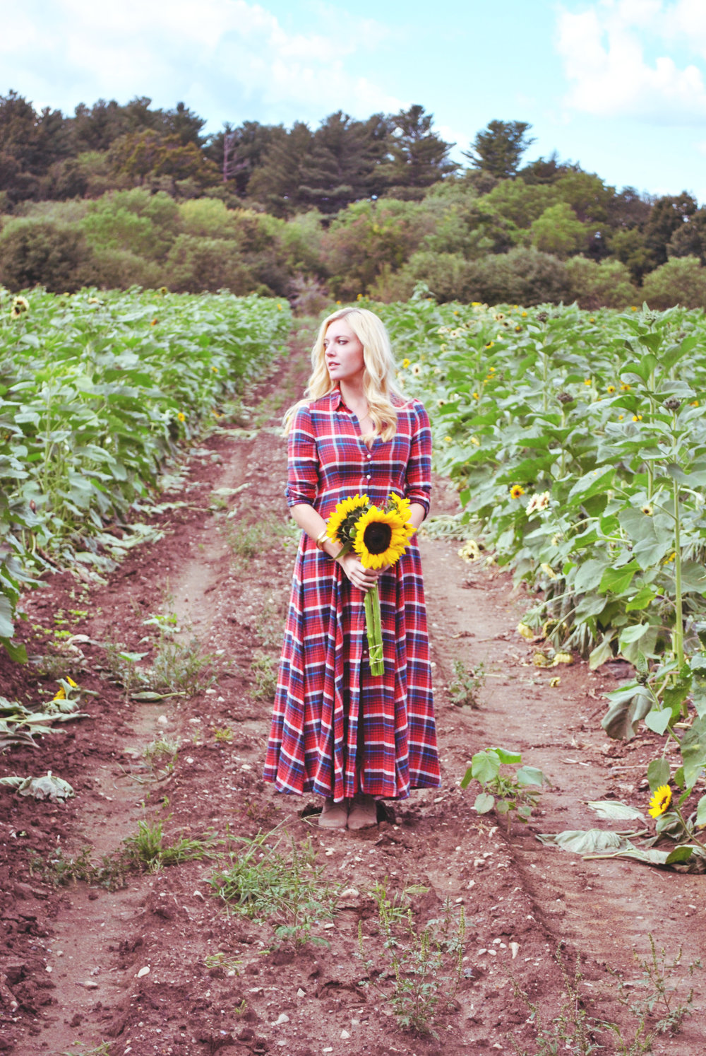 thoughtfulwish | plaid // denim supply // ralph lauren // fall outfit // apple picking // sunflower farm // new england fashion // fall gown // boston // preppy // meredith wish