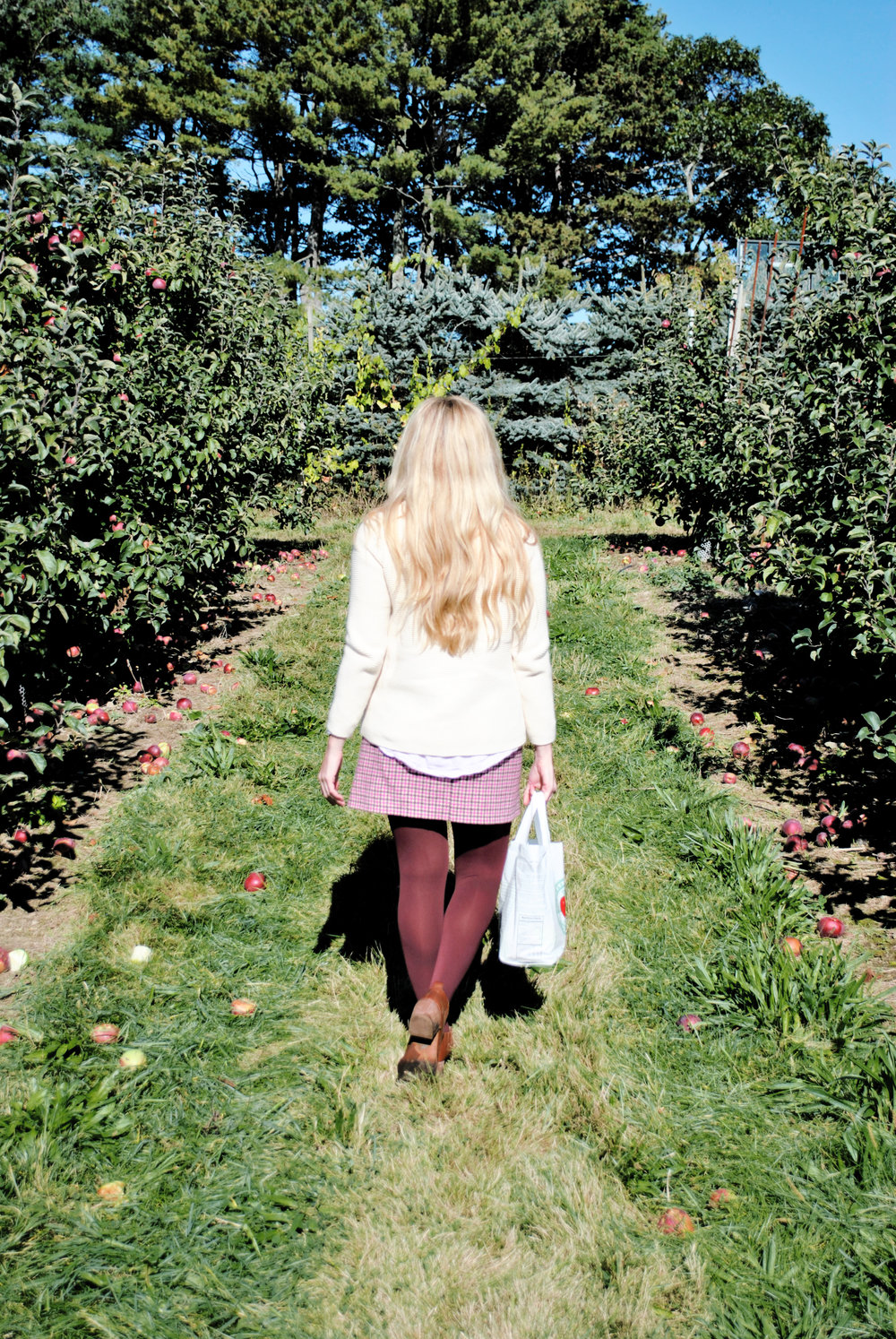 thoughtfulwish | apple picking, fall outfit, apple outfit, burgundy, j.mclaughlin, j.crew, nordstrom, meredith wish, boston, new england fashion, fashion blogger
