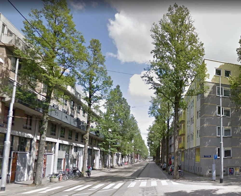 Czaar Peterstraat bomen.JPG